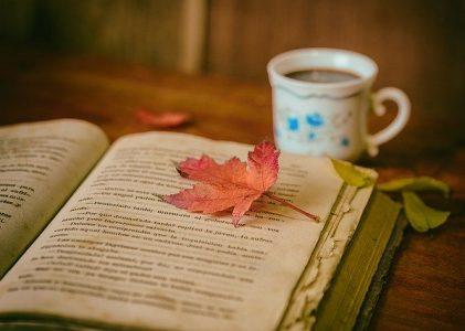 Te recomiendo un libro V