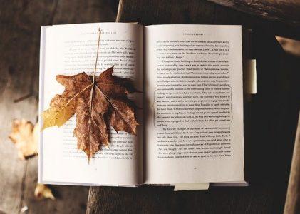 Te recomendamos un libro VII